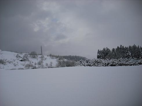 2010-2,13,炭焼き小屋・他雪 017.JPG