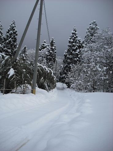 2010-2,13,炭焼き小屋・他雪 021.JPG