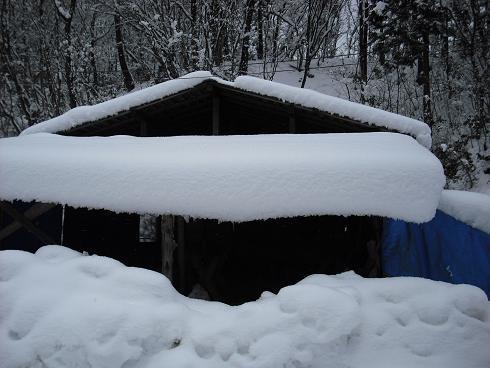 2010-2,13,炭焼き小屋・他雪 035.JPG