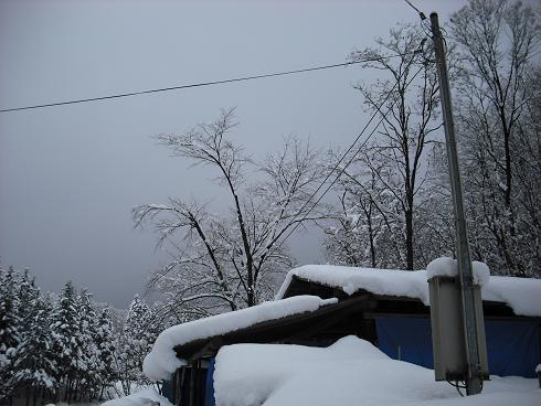 2010-2,13,炭焼き小屋・他雪 038.JPG