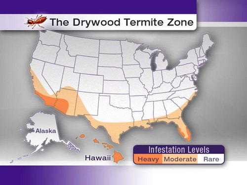 Drywood-Termite-Zone-Map.jpg