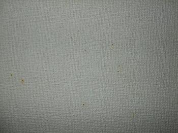 H20,9,A 003.jpg
